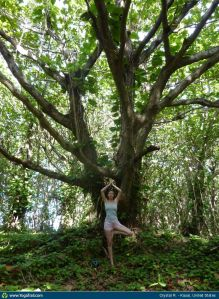 yoga-pose-tree-pose-6533-1